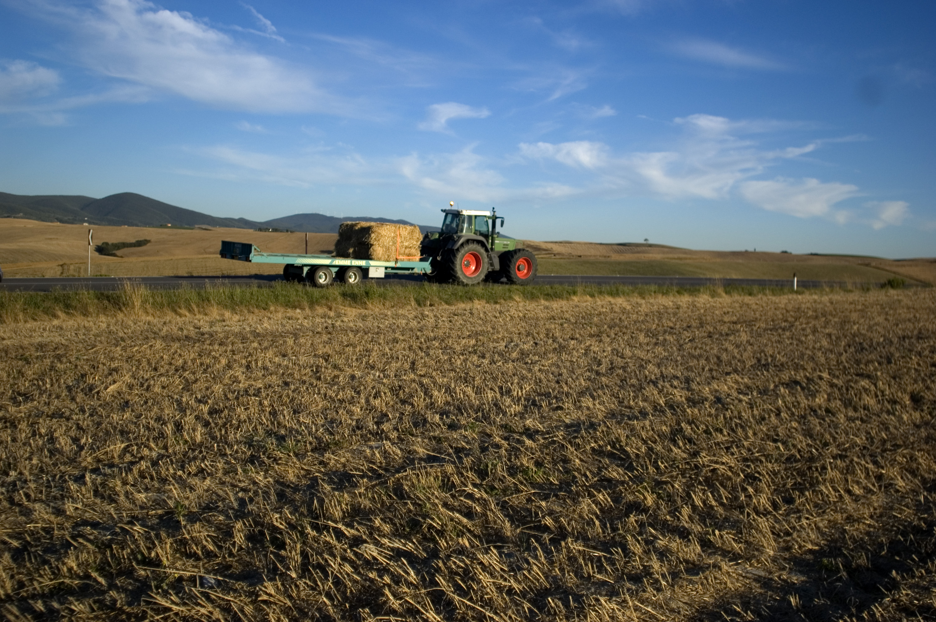 Grains industry gets a needed boost