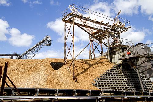Tasmanian Deputy Premier Bryan Green to chair Pulp Mill Consultative Committee