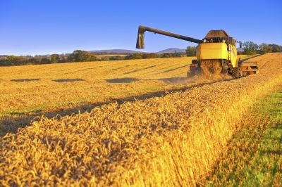 WA Government announces open applications for concessional farm loans
