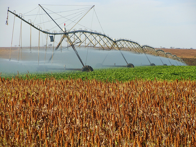 Surat Basin water release to boost agriculture and local industry