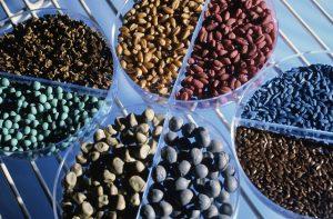 Image credit: flickr user: Bayer CropScience