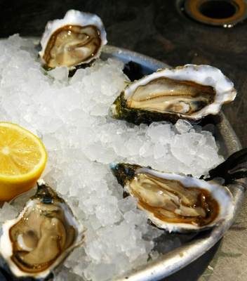 Growing the oyster industry in the Northern Territory – new DAC program to ramp up fisheries