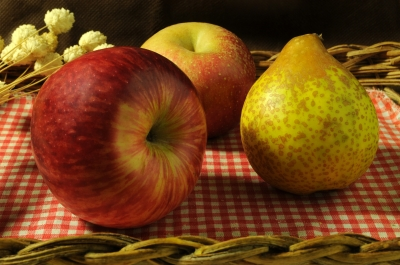 Victoria set to launch temperate fruit export pilot program