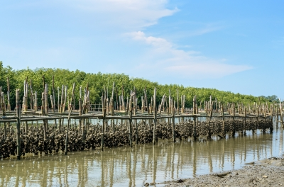 $1.66m to promote growth of aquaculture industry