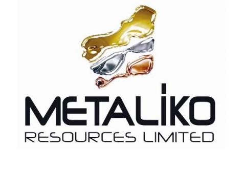Echo completes Metaliko takeover