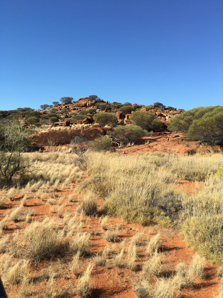 Cazaly Resources: Mount Venn Gold Project exploration licence and access granted